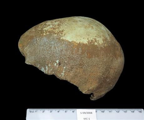 Ancient Israeli skull may document migration from Africa