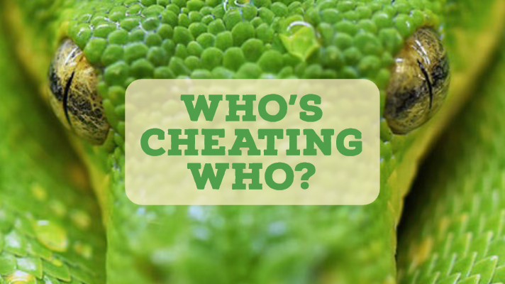 Who's Cheating Who?