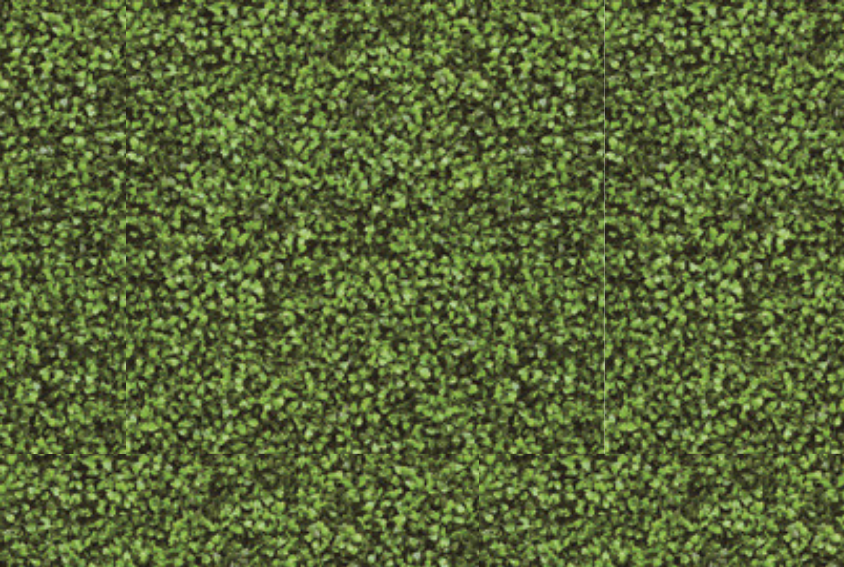 Green Hedge Backdrop