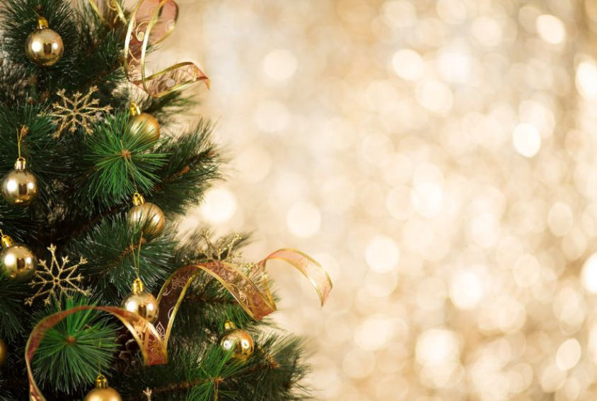 Christmas Tree and Gold Shimmer Backdrop