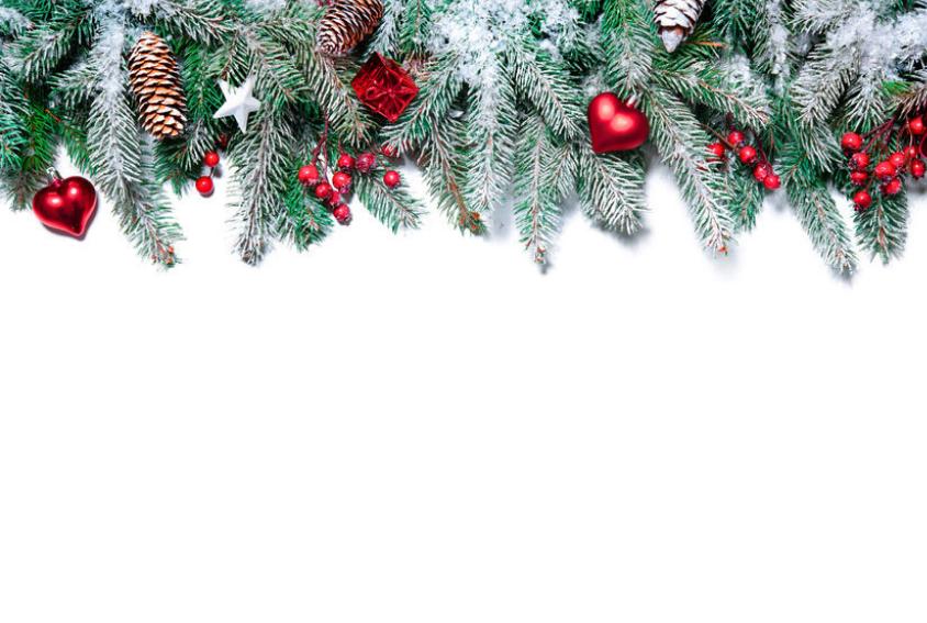 Christmas Garland Backdrop