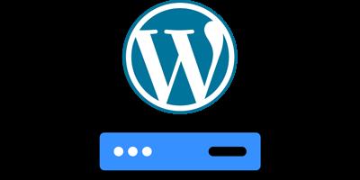 WordPress Ecommerce