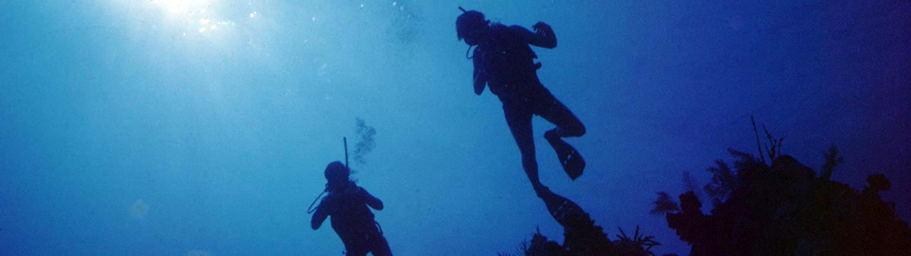 Divers profiled against the ocean blue