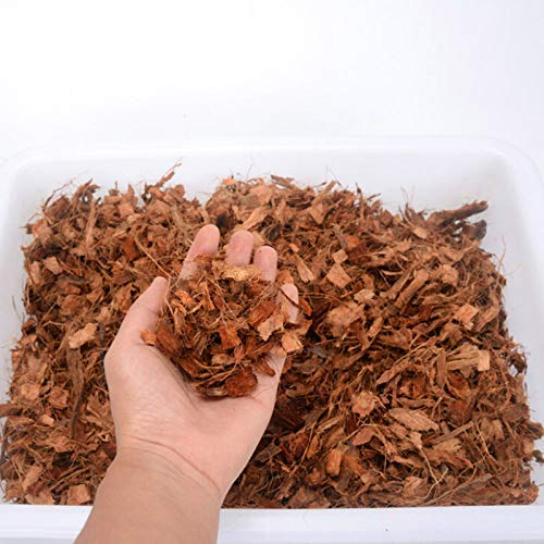 Coco pith Chips / Coir Chips