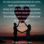 Rumi slaughterhouse of love quote meaning