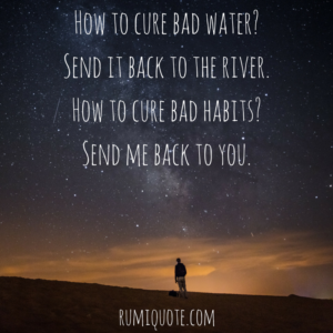 Rumi my worst habit poem quote meaning