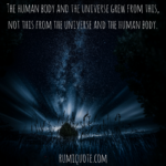 Rumi this we have now poem quote meaning