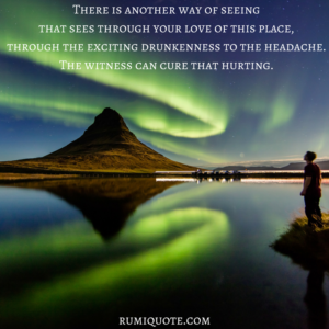 Rumi the witness, the darling poem quote meaning