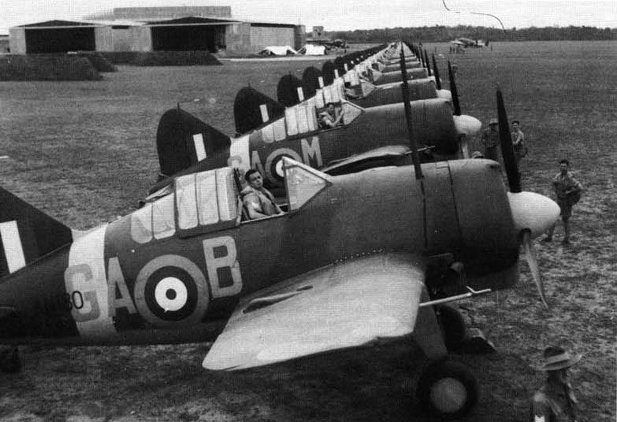 A gaggle of RAF Buffaloes lined up for inspection.