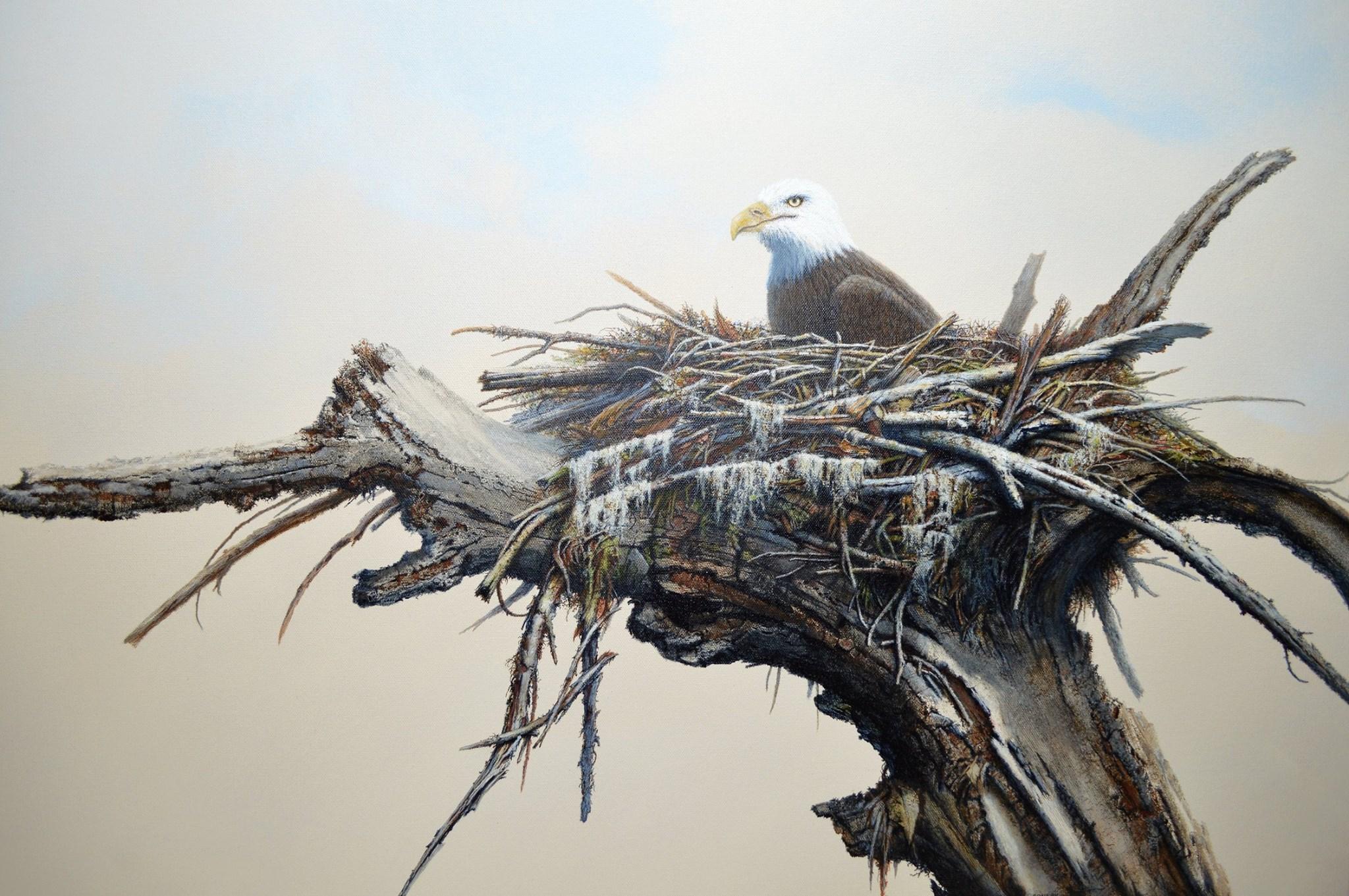Nest Under Construction