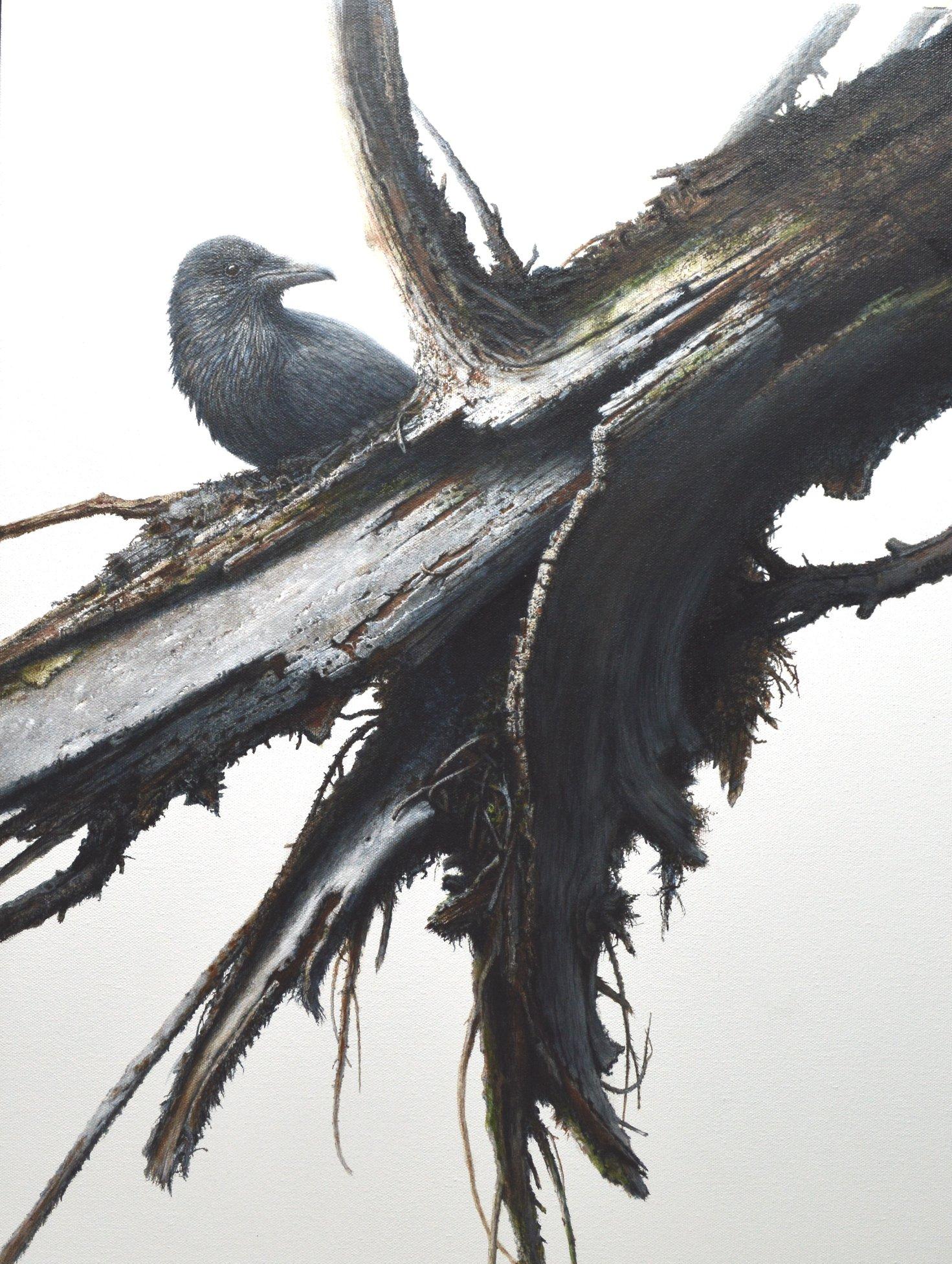 Riverside Raven