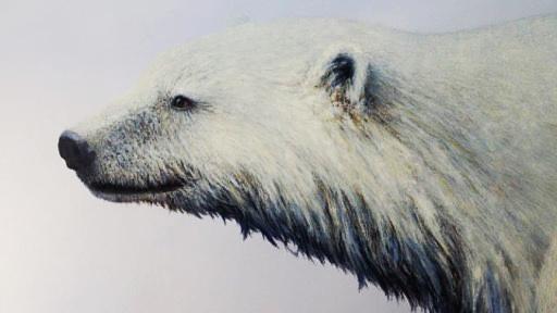Polar Bear #1