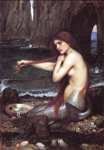 The Woman Who Fell in Love with a Mermaid by Amanda Rodriguez