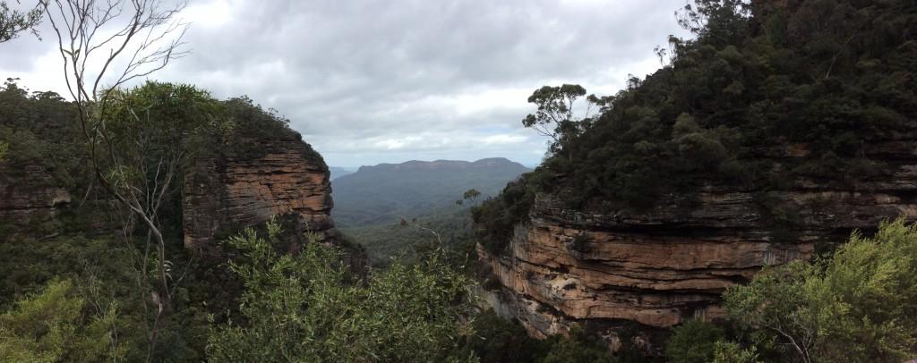 Blue Mountains area