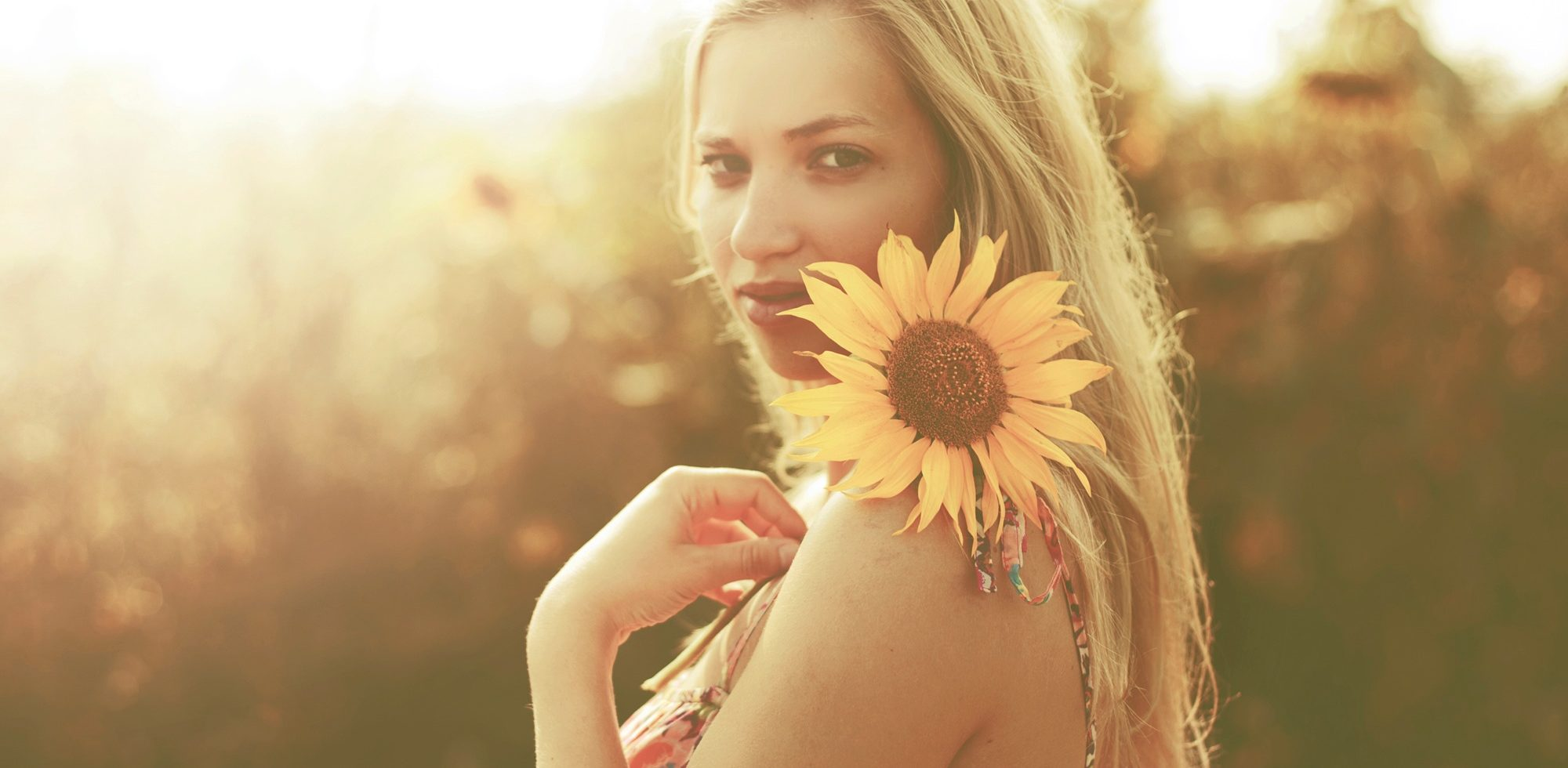 When the Sunflowers Face the Sun by Olivia Punch