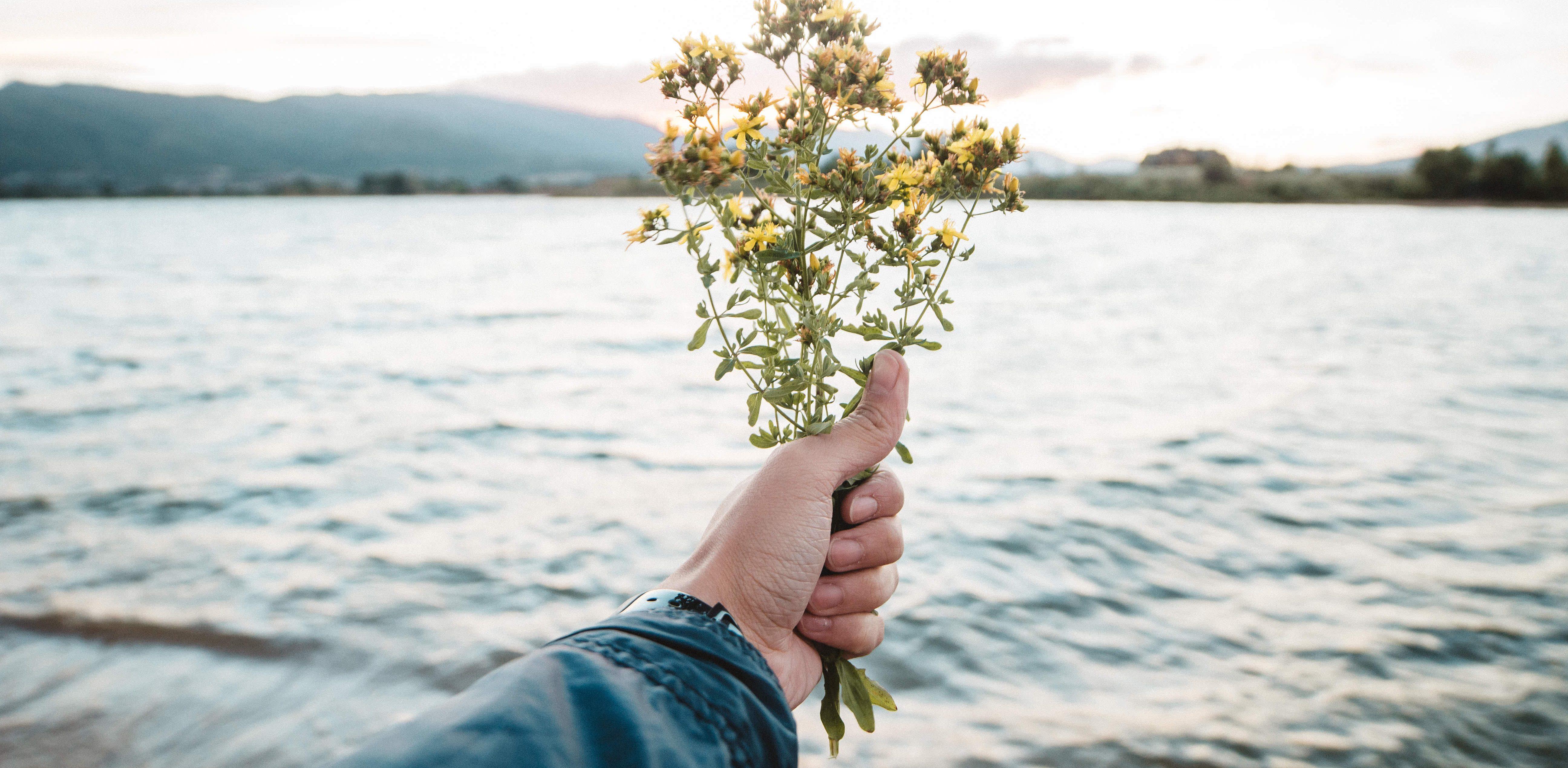 Dear Past Me: Live, Love, and Appreciate