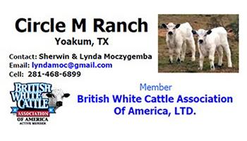 circle-m-ranch1