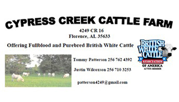 cypress-creek1
