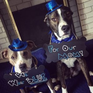 """INSPIRE's March """"Wear All Blue"""" – DAY 6"""