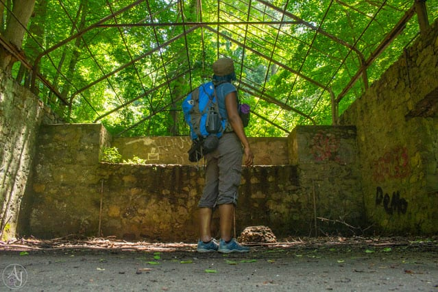 Day Hiking Bag