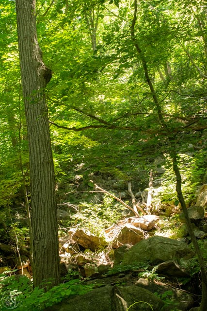 On the Cornish Trail in Hudson Valley