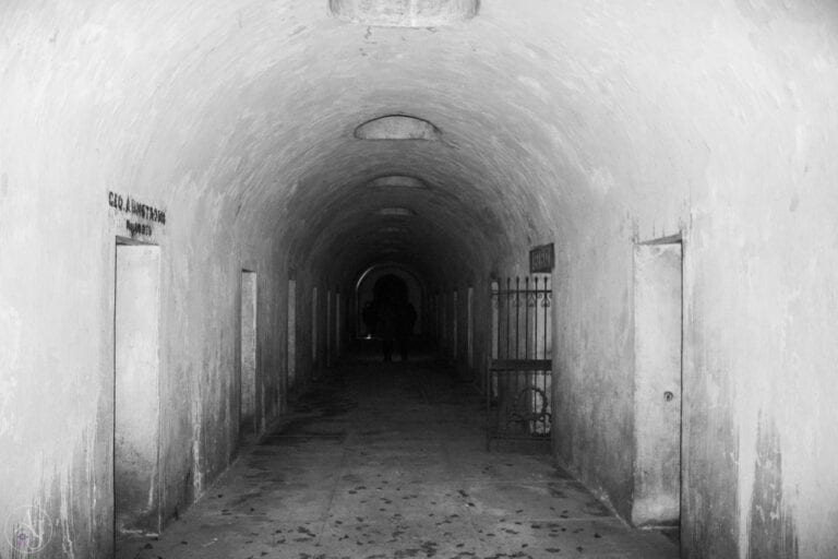 Green-wood cemetery catacombs horror