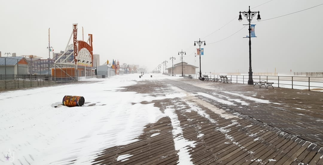 incredible nature photos of brooklyn snowstorm