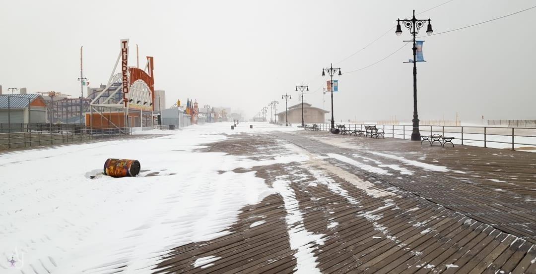incredible nature photos of brooklyn snowstorm