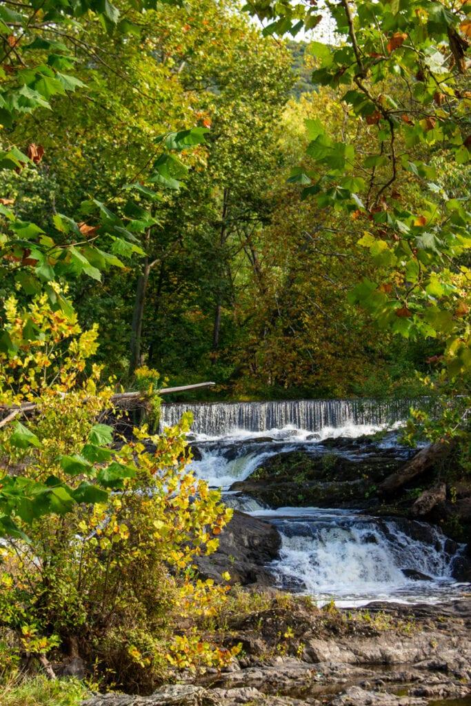 madam brett park fall landscape