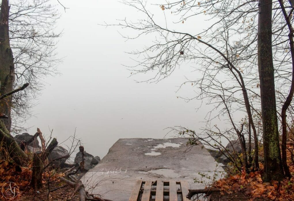 halloween scary foggy day photo