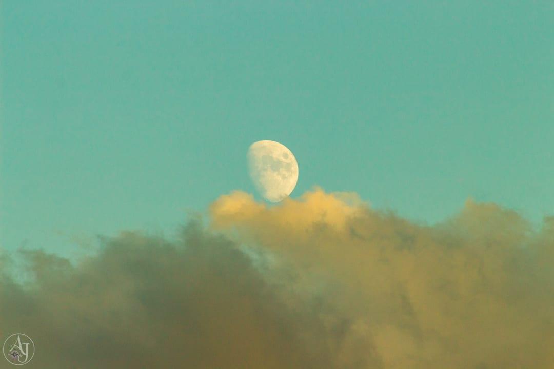 moonrise photo