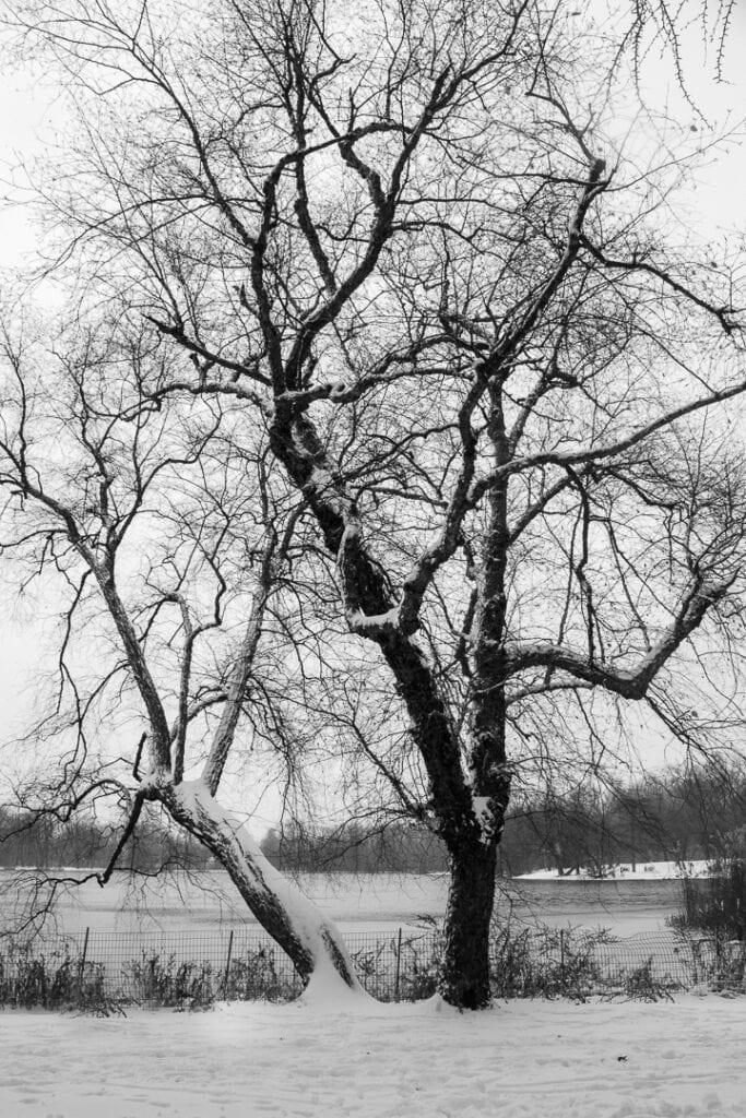 Amazing winter photos