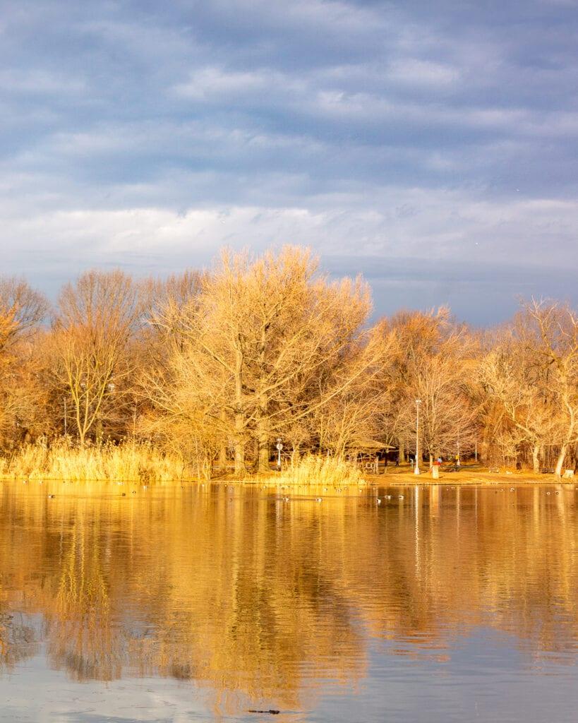 Beautiful Nature Photo Winter Sunrise