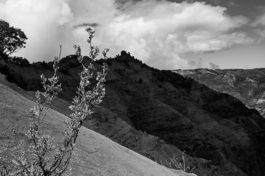 Black and white landscape photography of Waimea Canyon in Hawaii