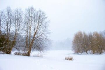 Winter Landscape Photography Prospect Park