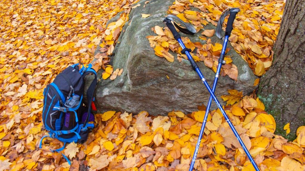 Hiking Bag and Trekking Poles