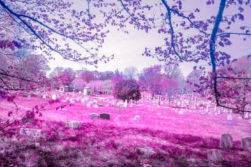 Infrared Fantasy Landscape Photography