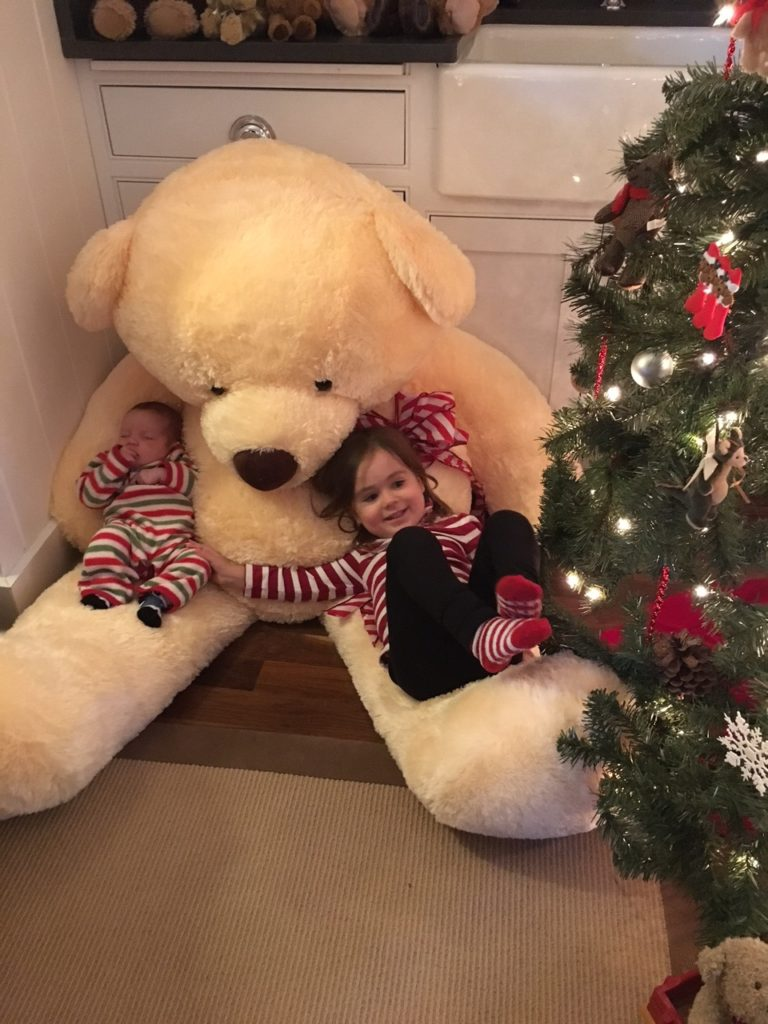 Donate Now To Martha's Vineyard Teddy Bear Suite Fundraiser