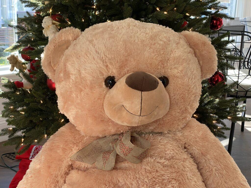Martha's Vineyard Teddy Bear Suite Martha's VIneyard Boys & Girls CLub Martha's VIneyard  Anniversary Bear Christmas in Edgartown