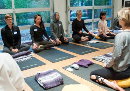 Inseus Mindfulness Group at Green Light Center