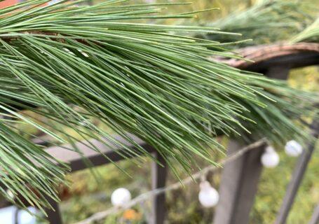 pine-railing-with-lights