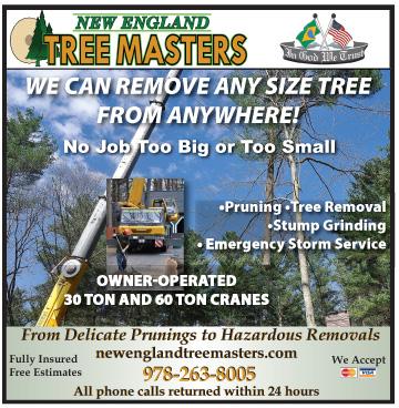 TreeMasters070914online