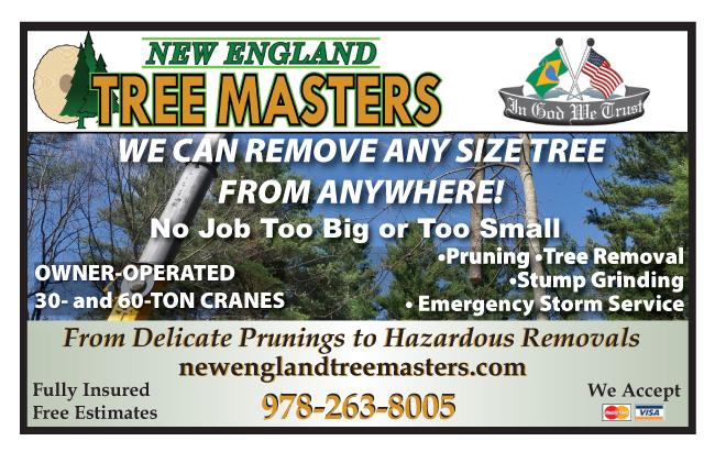 TreeMasters041015