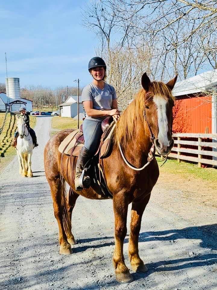 Cain - under saddle