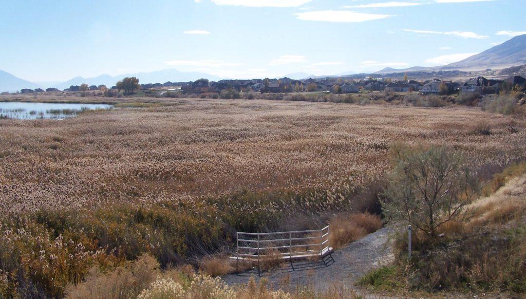 Another Utah Lake Shoreline Restoration Project To Begin Soon