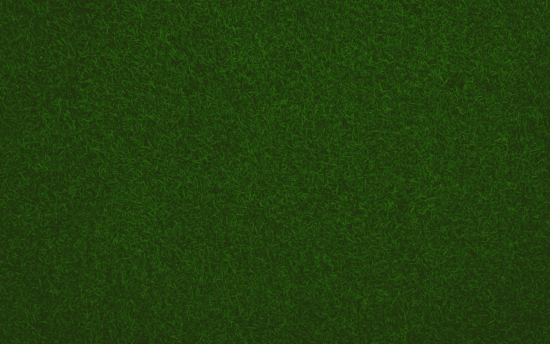 Green grass from above