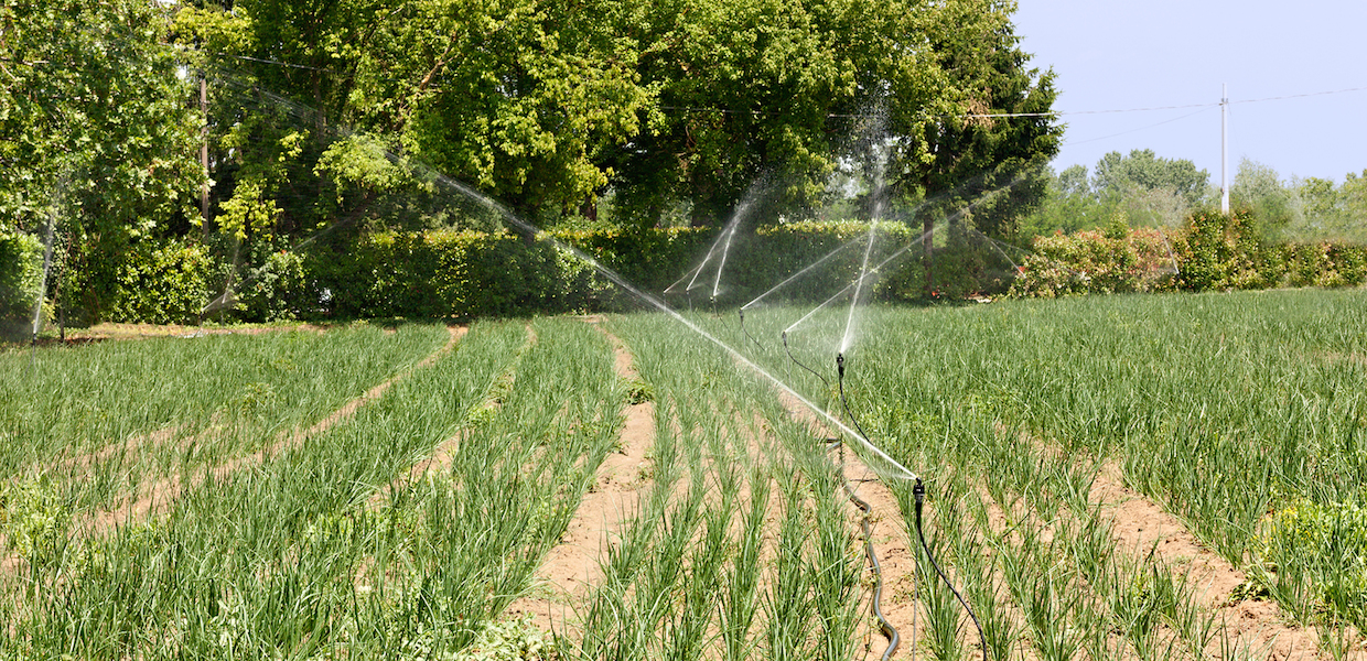 Irrigation Water