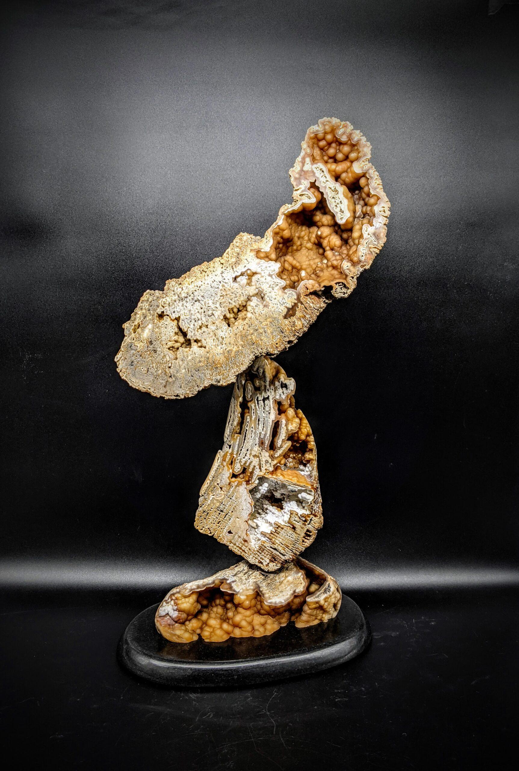 Agatized Coral Sculpture