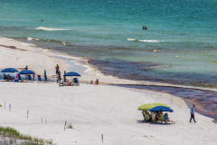 Blue Mountain Beach.com Dune Lake