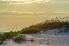 Topsoil Sand Dunes